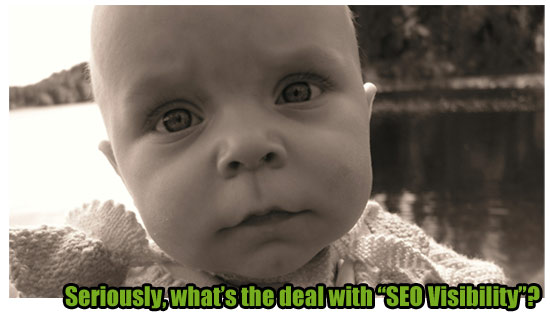 Searchmetrics Moments - What is SEO Visibility?