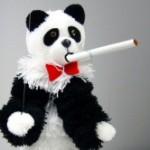 Panda-Update2