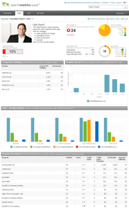 Big Data in SEO (2): Daily Report