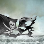 With the Google Pirate Update sites that infringe copyrights were banned from the index