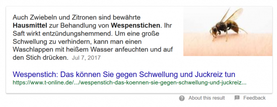 wespenstich-featured-snippet-absatz