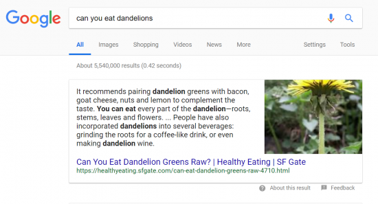 eating-dandelions-featured-snippet-examples