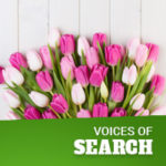 SEO Spring Bloom – Optimizing Content for Moms, Dads, Grads – Jordan Koene // Searchmetrics