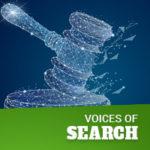 Penalties & recourse for grey hat SEO practices  — Joe Sinkwitz // Digital Heretix