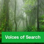 Applying Search Data in the Wild – Tyson Stockton & Alan Turner // Searchmetrics